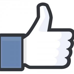 o-FACEBOOK-LIKE-facebook