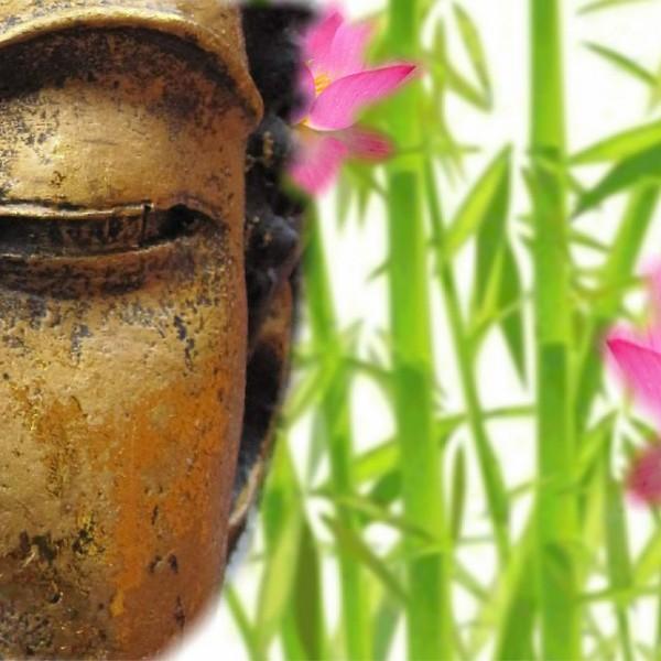 buddha-708683_960_720