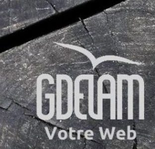 GdelaM – Webmarketing – Consultant SEO