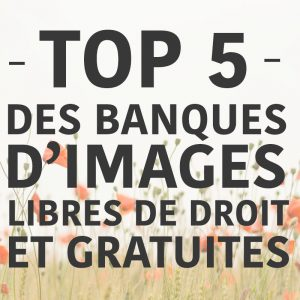 top 5 banques d'images