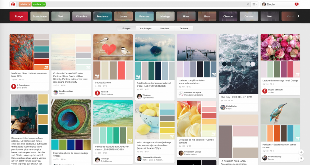 palette graphique pinterest