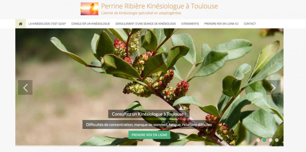 Perrine Ribière kinesiologue Toulouse
