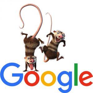 Algorithme Google Opossum